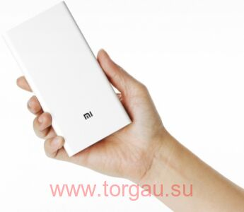 Xiaomi Mi 2 20000 mAh power bank